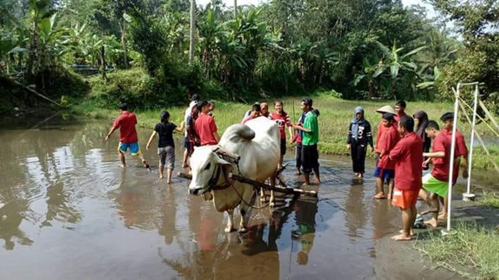 Menarik, 31 Desa Wisata Kab Sleman
