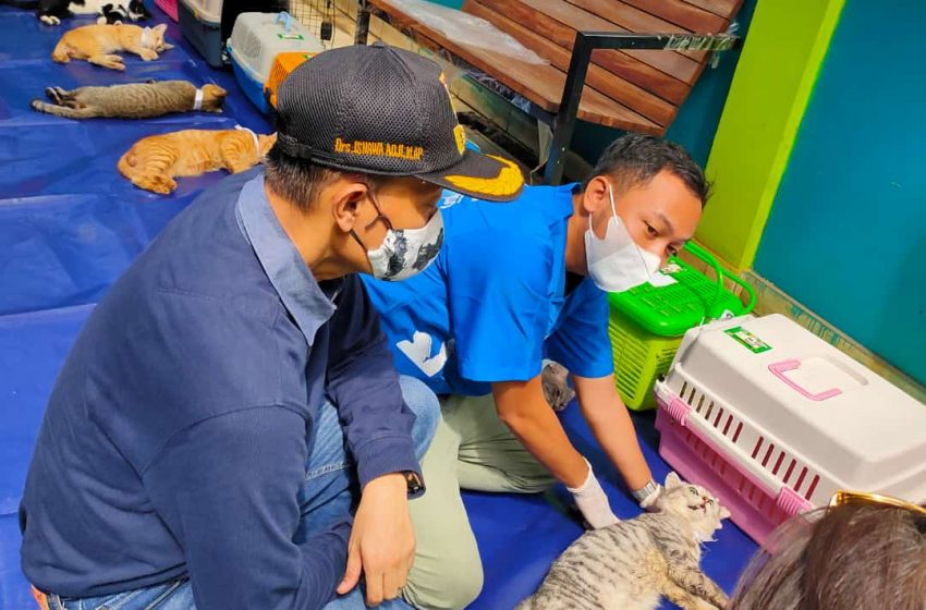 Plt Wali Kota Jaksel Apresiasi Vaksinasi Massal dan Sterilisasi Kucing
