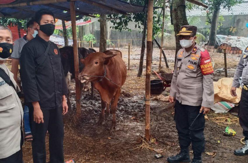 Polsek Cinere Serahkan Hewan Qurban Kepada DKM Mushola Baitul Rahman